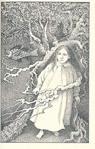 9780374327064: The Golden Key (An Ariel Book)