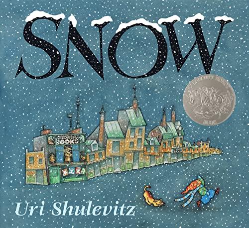 9780374370923: Snow (Caldecott Honor Book)