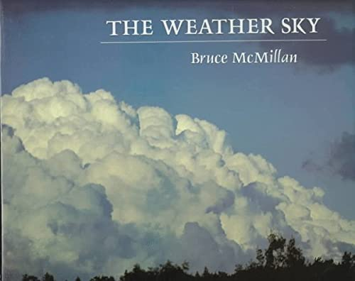 9780374382612: The Weather Sky