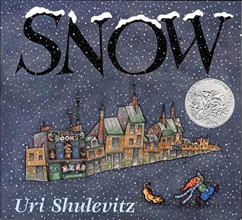 9780374468620: Snow (Sunburst Books)