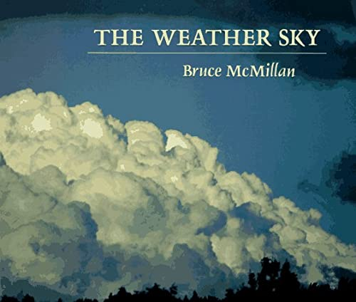 9780374482664: The Weather Sky
