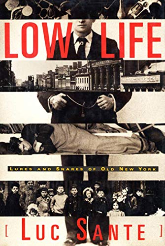9780374528997: Low Life: Lures and Snares of Old New York