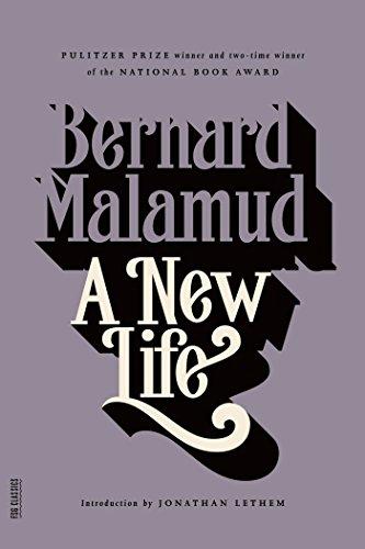 9780374529499: A New Life: A Novel