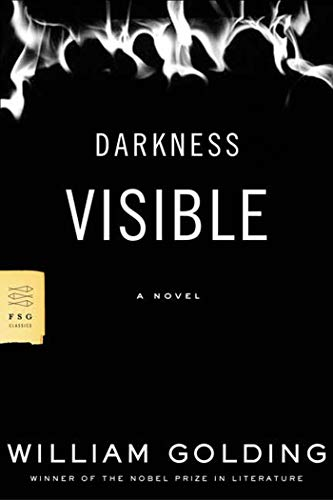 9780374530518: Darkness Visible: A Novel