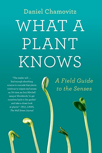 9780374533885: What a Plant Knows: A Field Guide to the Senses