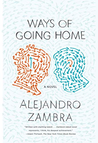 9780374534356: Ways of Going Home