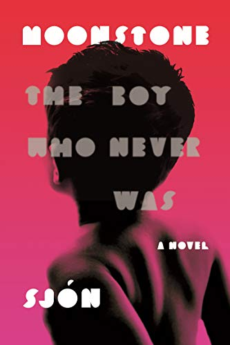 9780374536923: Moonstone: The Boy Who Never Was