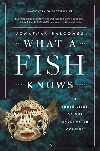 9780374537098: What a Fish Knows: The Inner Lives of Our Underwater Cousins