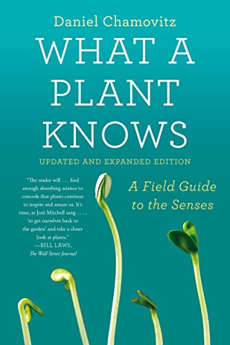 9780374537128: What a Plant Knows: A Field Guide to the Senses: Updated and Expanded Edition