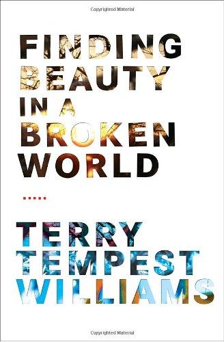 9780375420788: Finding Beauty in a Broken World