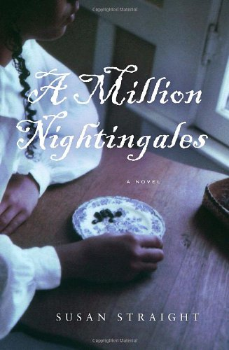 A Million Nightingales: Straight, Susan
