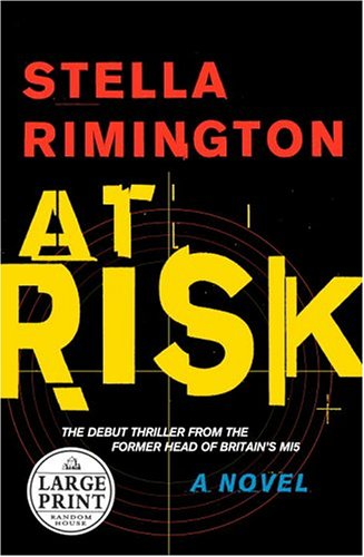 9780375434570: At Risk (Random House Large Print)
