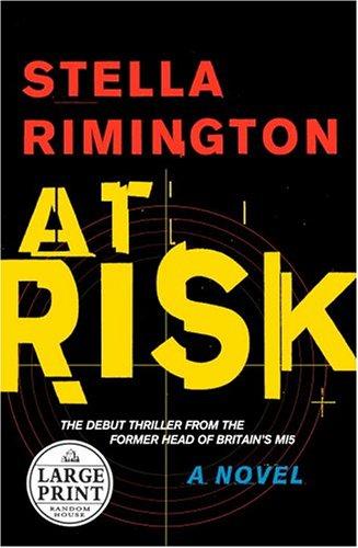 9780375434570: At Risk (Random House Large Print)