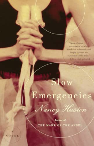 9780375709203: Slow Emergencies: A Novel
