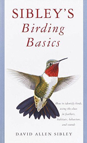 9780375709661: Sibley's Birding Basics: How to Identify Birds, Using the Clues in Feathers, Habitats, Behaviors, and Sounds