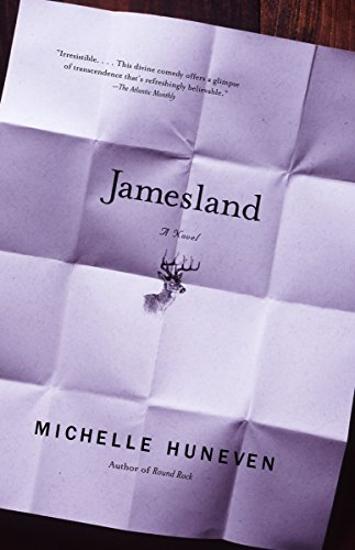 9780375713132: Jamesland (Vintage Contemporaries)