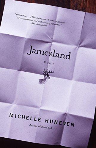 9780375713132: Jamesland (Vintage Contemporaries)