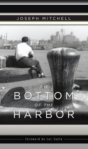 9780375714863: The Bottom of the Harbor
