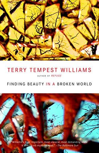 9780375725197: Finding Beauty in a Broken World