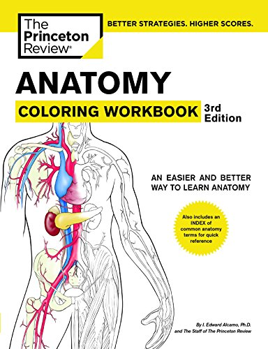 Anatomy Coloring Workbook, 3rd Edition (Coloring Workbooks): Princeton Review