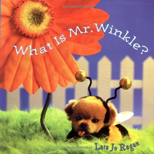 9780375815546: What Is Mr. Winkle? (Step Back in Time with Mr. Winkle)