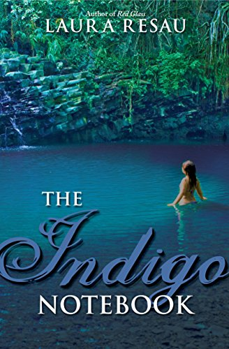 9780375845246: The Indigo Notebook (Indigo Notebook (Paperback))