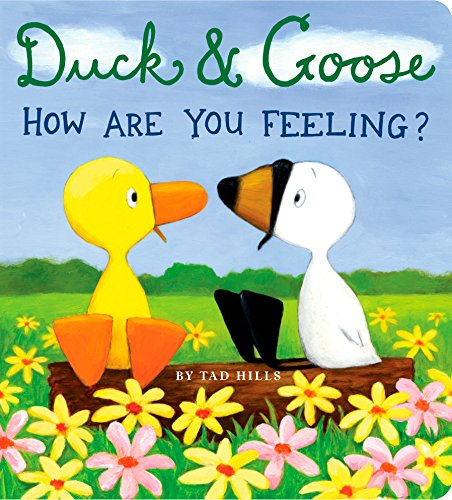 9780375846298: Duck & Goose - How Are You Feeling?
