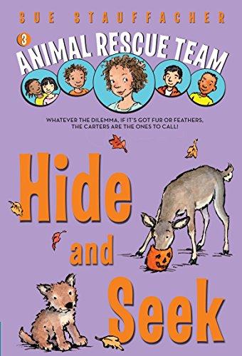 9780375851339: Hide and Seek