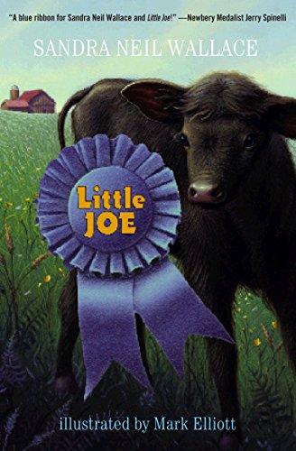 9780375854507: Little Joe