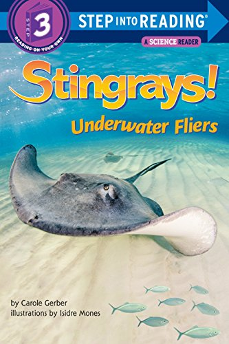 Stingrays! Underwater Fliers (Step into Reading): Gerber, Carole