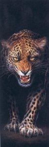 9780380003778: Leopard