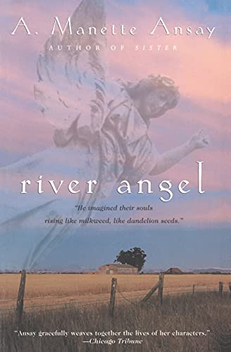 River Angel: A Novel: Ansay, A. Manette