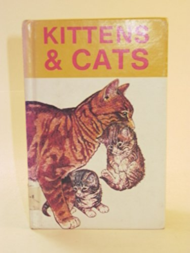 Kittens and Cats (Whizz Kids): Michael Findlay; Illustrator-Jim