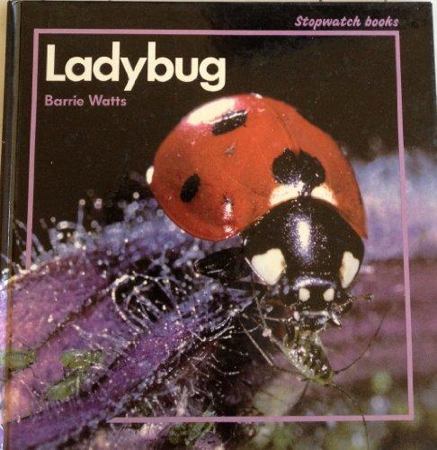9780382094415: Ladybug (Stopwatch Series)