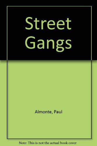9780382247583: Street Gangs (Update)