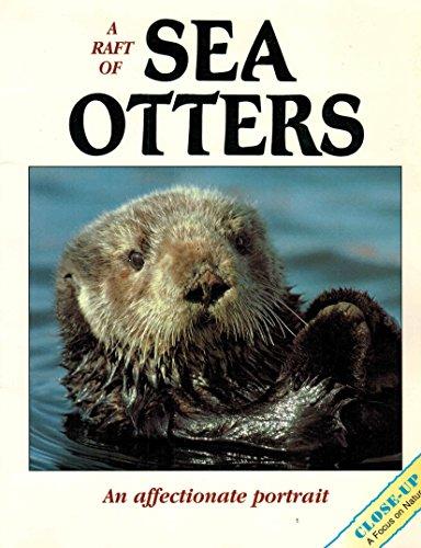 A Raft of Sea Otters : An: Leon, Vicki; Bucich,