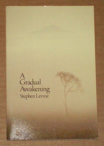 A Gradual Awakening: Levine, Stephen