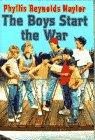 9780385308144: Boys Start the War, The