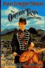 9780385320733: A Dangerous Promise (Orphan Train Adventures, Book 4) (The Orphan Train Adventures)