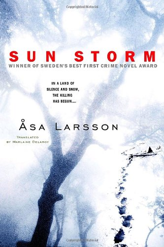 9780385339810: Sun Storm
