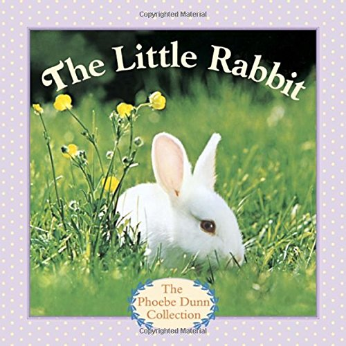 9780385386043: The Little Rabbit (Phoebe Dunn Collection)