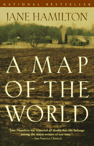 9780385473118: A Map of the World