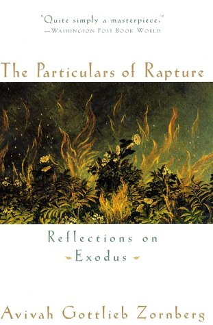 9780385491532: The Particulars of Rapture: Reflections on Exodus: Reflections of Exodus