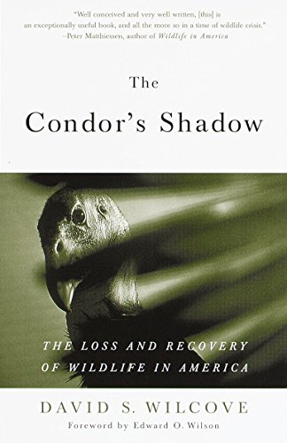9780385498814: The Condor's Shadow: The Loss and Recovery of Wildlife in America