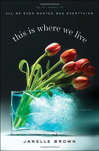 9780385524032: This Is Where We Live: A Novel
