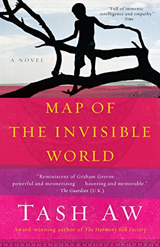 9780385527972: Map of the Invisible World: A Novel
