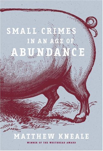 9780385661386: Small Crimes in an Age of Abundance