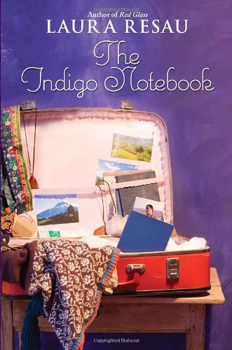 9780385736527: The Indigo Notebook (Indigo Notebook (Hardback))