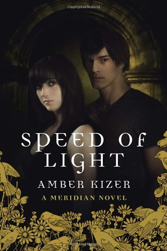 9780385741156: Speed of Light (Meridian)