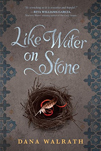 9780385743983: Like Water on Stone